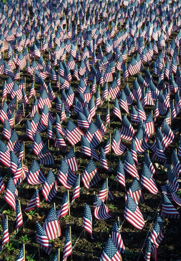 Amerikaanse Vlaggen ter ere van Onze Veteranen royalty-vrije stock foto's