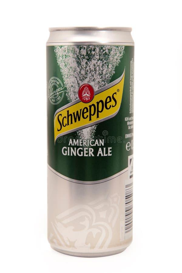 Amerikan Ginger Ale SCHWEPPES royaltyfri bild