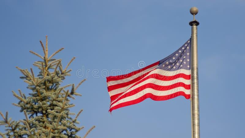 Amerikanische Flagge, die in den Wind mit einer immergrünen Kiefer nahe bei dem Flaggenpfosten fließt lizenzfreies stockfoto
