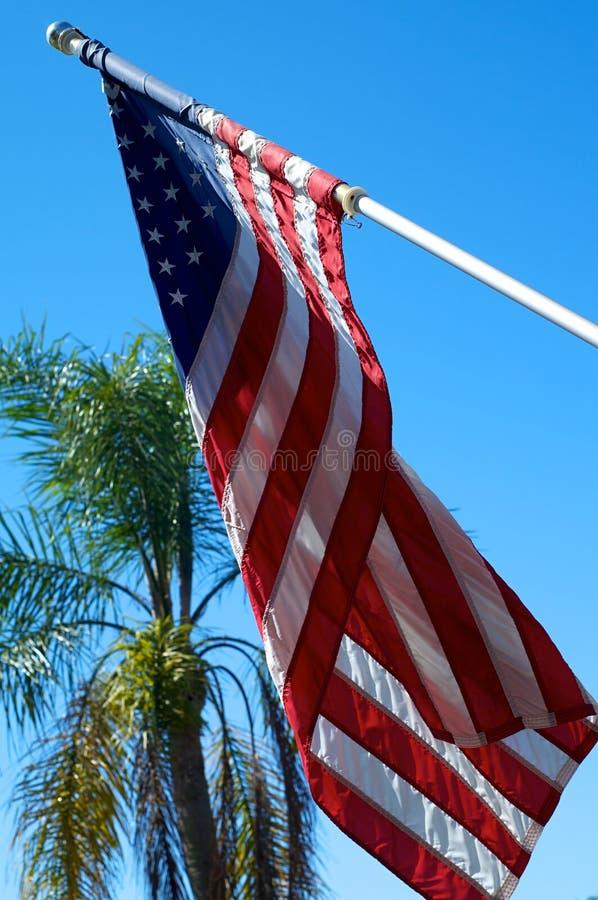 Amerikanische Flagge mit Palme lizenzfreie stockfotografie
