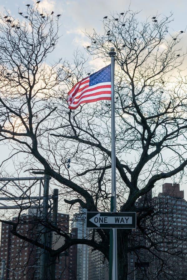 Amerikanische Flagge, Sternenbanner, brennend im Wind, auf einem Pfosten mit einem Zeichen mit EINEN MÖGLICHKEITEN, Vögel durch,  stockbild