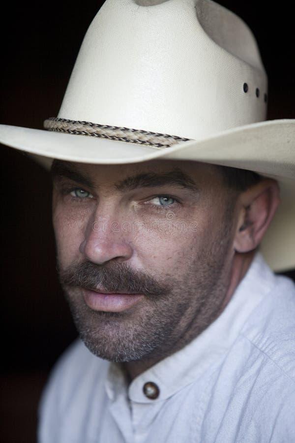 Amerikanischer Cowboy. stockbilder