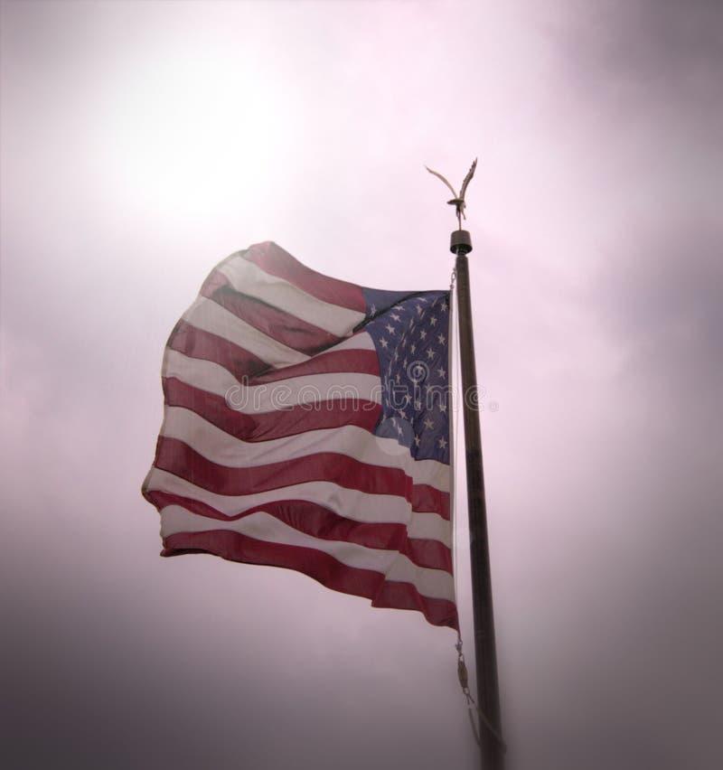 Amerikanischer Stolz stockfoto