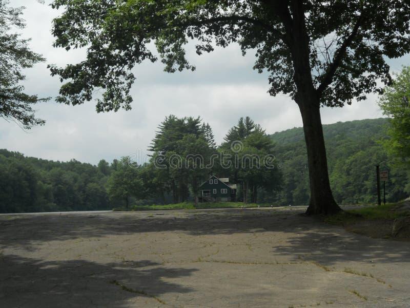 Amerikanisches Haus im Wald lizenzfreie stockfotos
