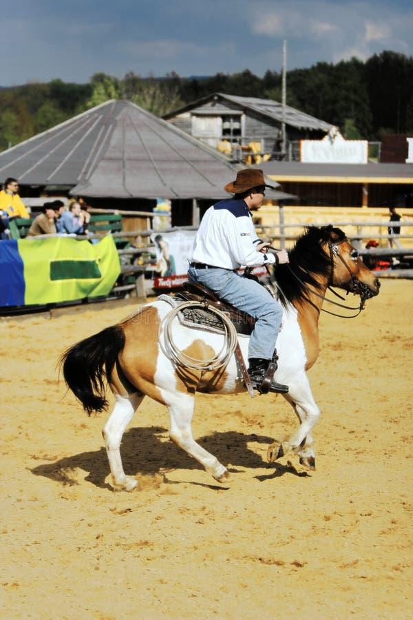 Amerikansk cowboy under rodeoshow arkivfoto
