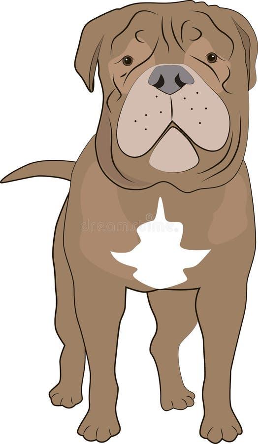 amerikansk hundmastiff för clipping 3d över white för banaframförandeskugga vektor illustrationer