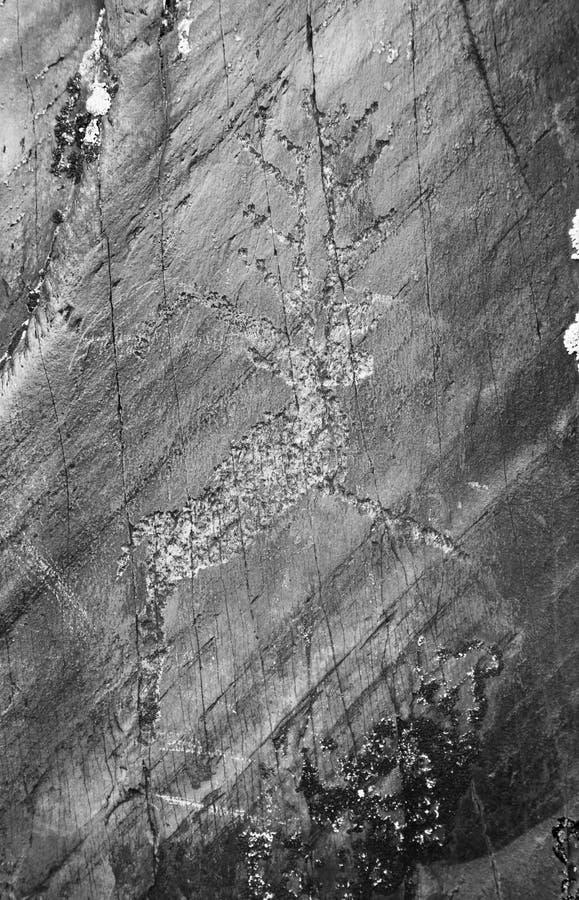 Amerikansk infödd petroglyph