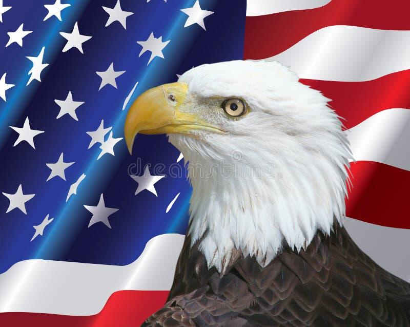 Amerikansk skalliga Eagle stående med USA flaggabakgrund royaltyfri fotografi