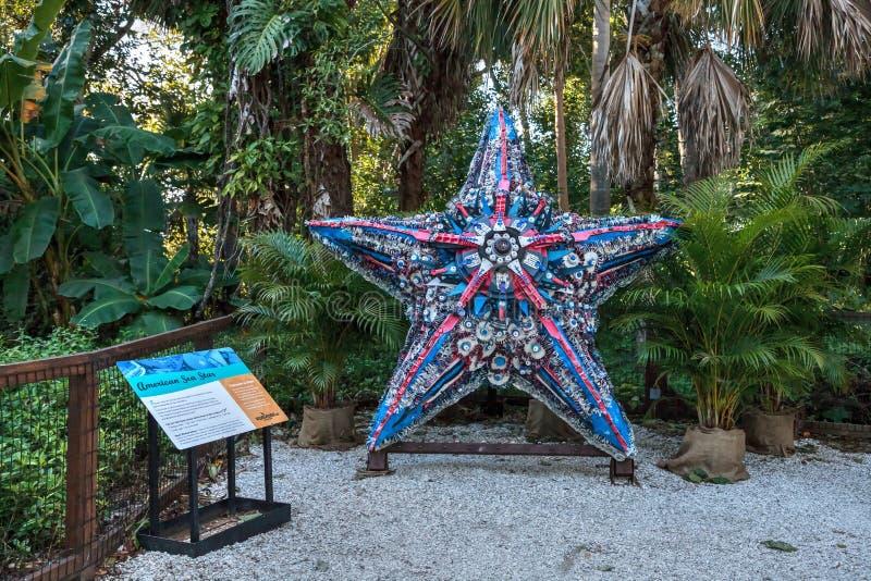 Amerikansk skulptur för havsstjärna som göras av avskräde som finnas i havet som delen av den sköljas upp på stranden konstutstäl arkivbild