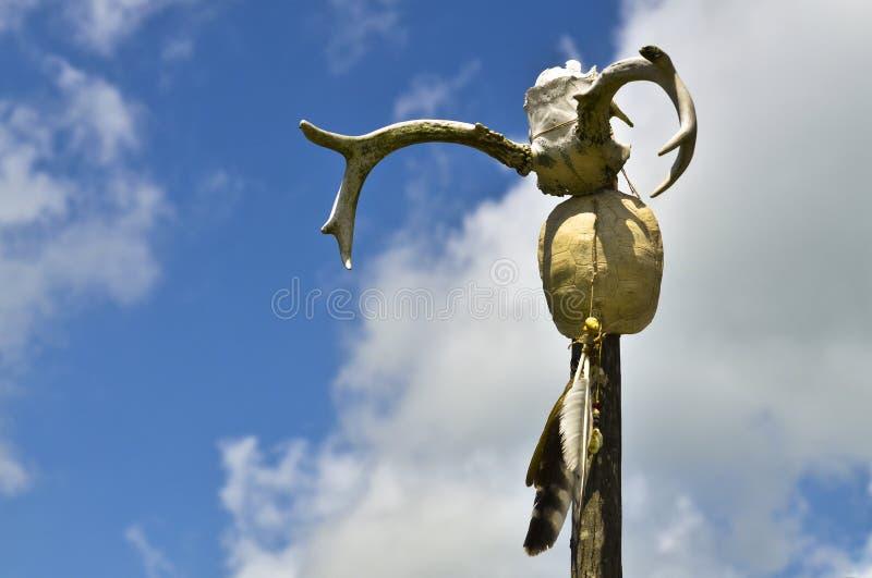 amerikansk stam- ceremoniinföding royaltyfria foton
