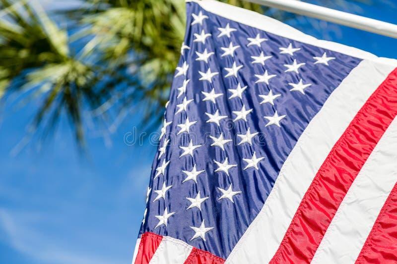 Amerikanska flaggan med palmträdet i bakgrund arkivbilder