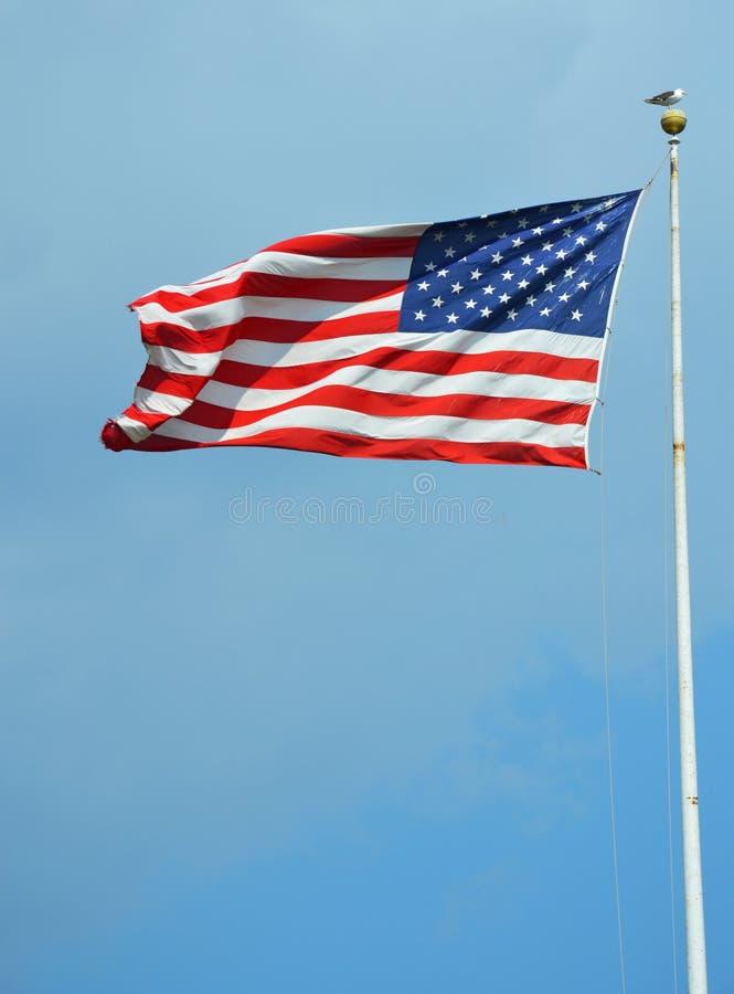 Amerikanska flaggan som vinkar i en himmel arkivfoton
