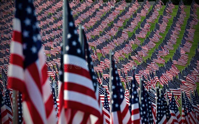 Amerikanska flagganfält arkivfoto