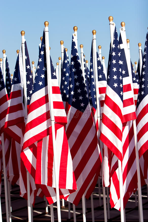 amerikanska gruppflaggor royaltyfri bild
