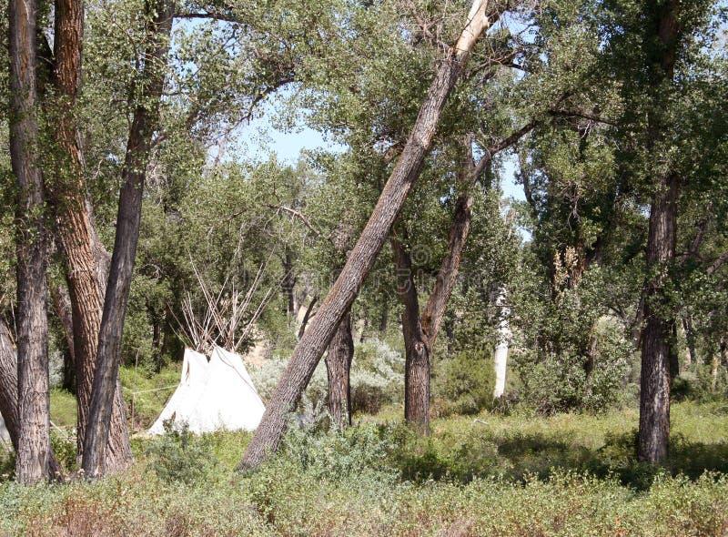 amerikanska infödda tipis arkivfoton