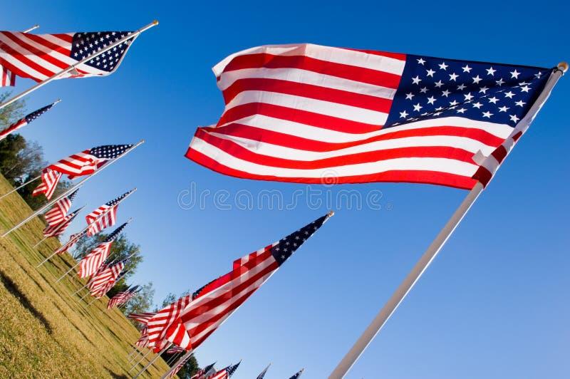 amerykańscy dni pokazu flagi honor weteranów fotografia stock