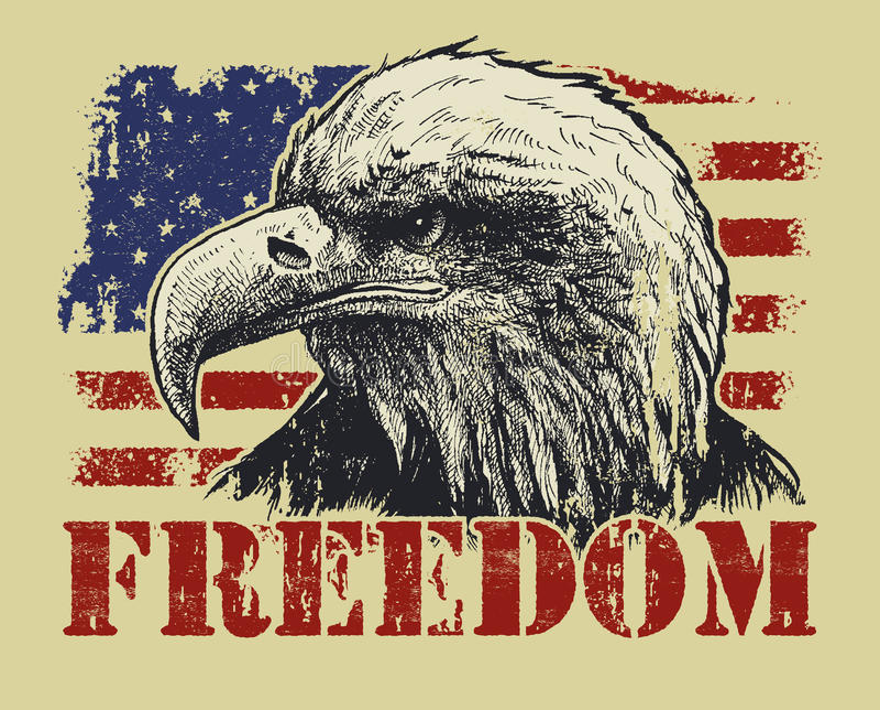 amerykańska flaga łysego orła royalty ilustracja