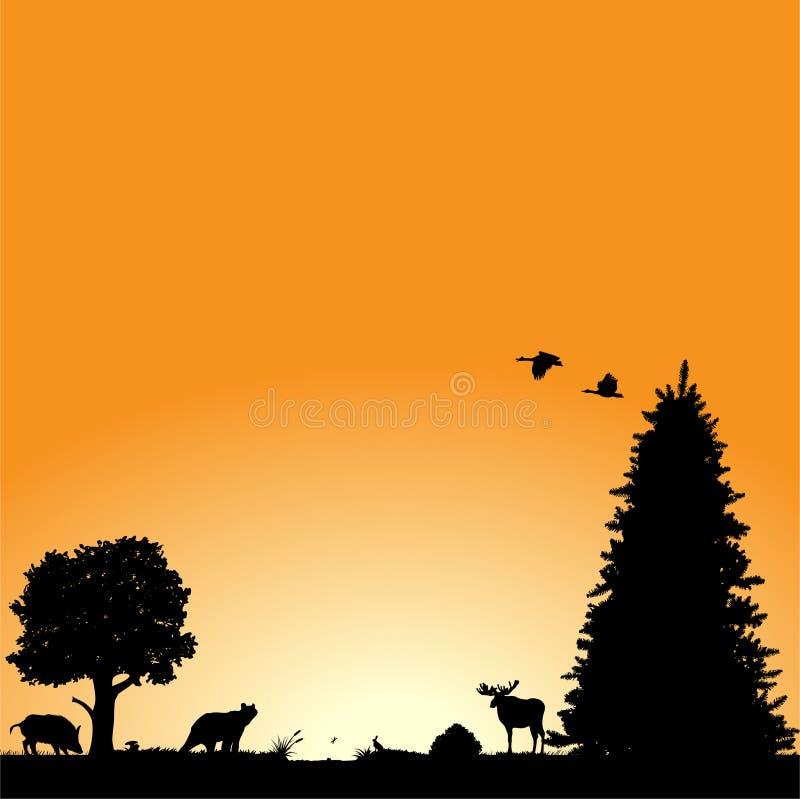 amerykańska północna przyroda ilustracja wektor
