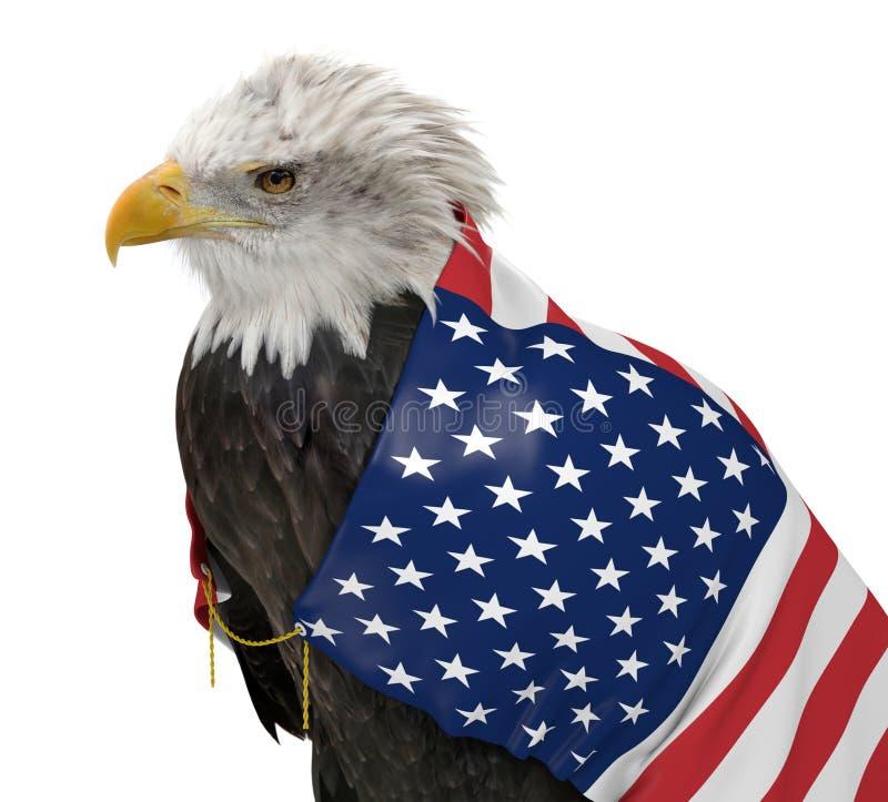 Amerykański łysy orzeł jest ubranym Stany Zjednoczone kraju flaga obrazy stock