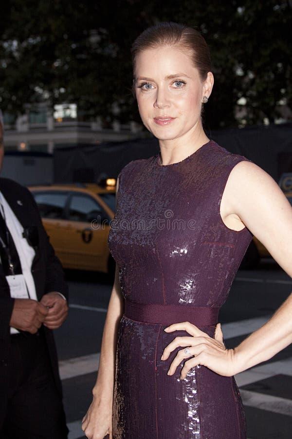 Amerykański aktorki Amy Adams portret obraz royalty free