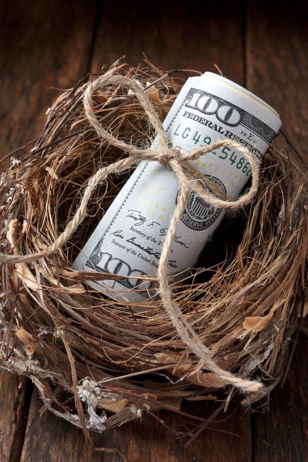 Amerykański Gniazdowego jajka pieniądze zdjęcia stock