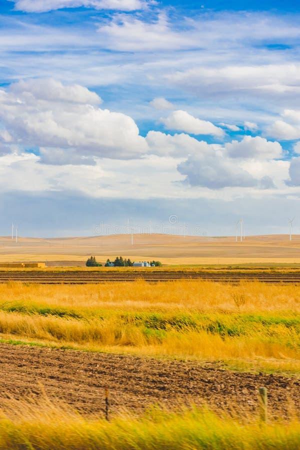 Amerykański Pastoralny krajobraz, silnik wiatrowy zdjęcie royalty free