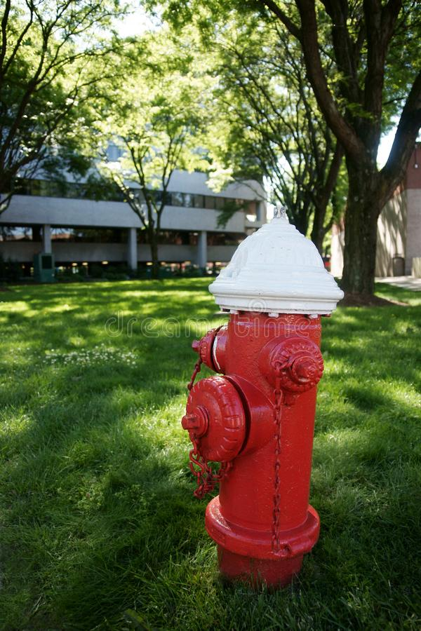 Amerykański Pożarniczy hydrant lub Standpipe związek zdjęcia royalty free