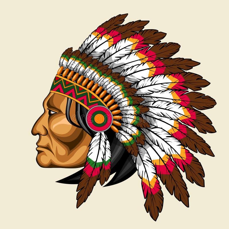 Amerykańsko-indiański w tradycyjnym kostiumu ilustracji