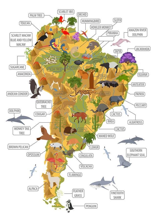 Ameryka Południowa faun i flor mapa, płascy elementy Zwierzęta, ptaki royalty ilustracja