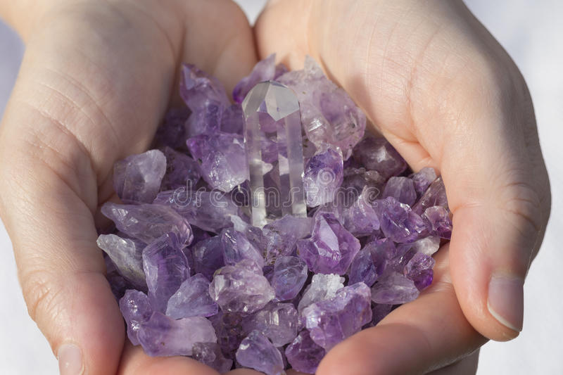 Amethyst Pieces in hands. Beautiful Amethyst Pieces in hands royalty free stock image