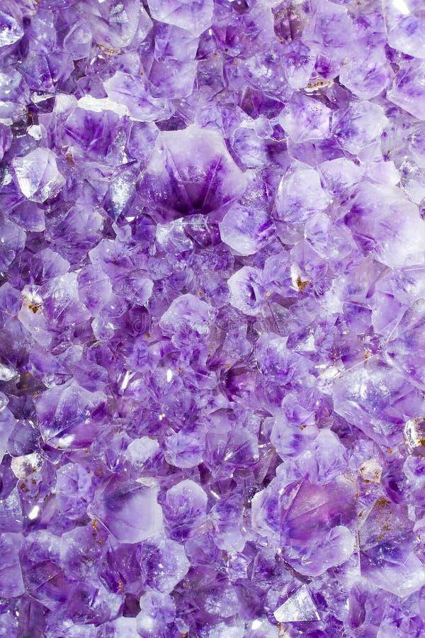 ametystowe purpury obraz stock