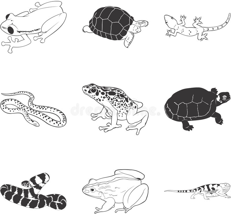 amfibiereptilar vektor illustrationer