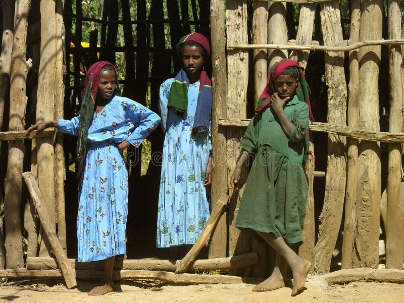 Amhara, Etiopia, l'11 dicembre 2006: Ragazze da una comunità rurale che esamina la macchina fotografica fotografia stock libera da diritti