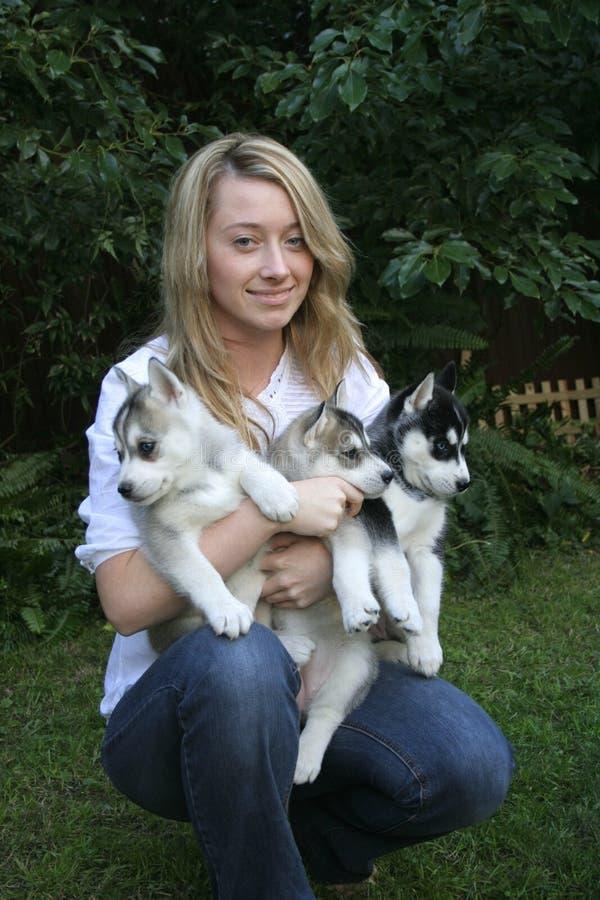 Ami i miei cuccioli husky fotografia stock libera da diritti