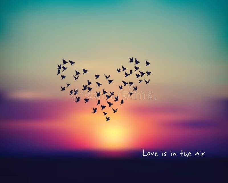 Ami la carta del segno dell'uccello del cuore nel giorno di biglietti di S. Valentino del tramonto del cielo illustrazione vettoriale
