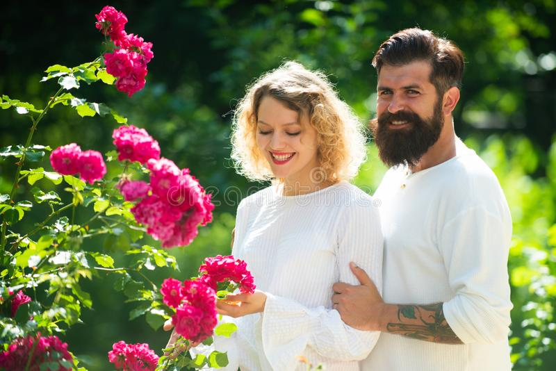 Amica soddisfatta e ragazzo che godono del momento romantico Abbracciare accarezzante dell'uomo amoroso baciando donna Giovani co immagine stock libera da diritti
