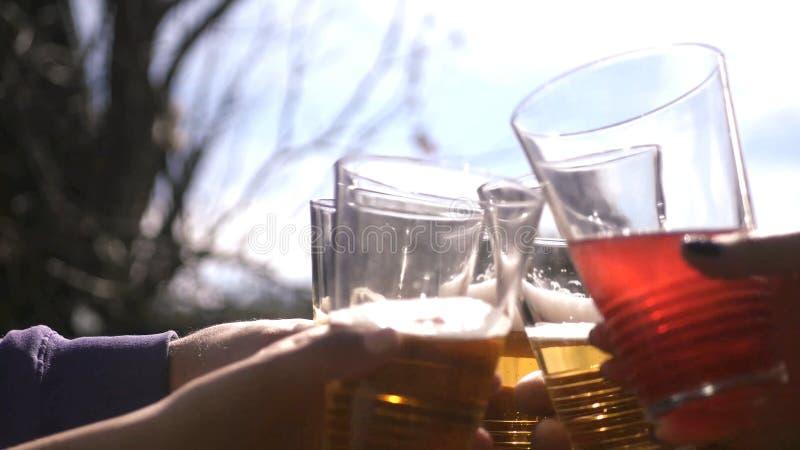 Amici che alzano i vetri di vino che hanno una cena festiva che tosta e che beve le bevande differenti contro il cielo ed il sole fotografia stock libera da diritti