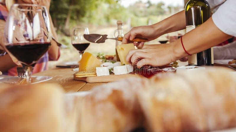 Amici che bevono vino fotografia stock libera da diritti