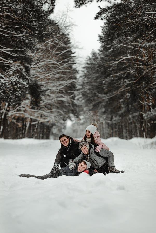 Amici che giocano con la neve in parco fotografie stock libere da diritti