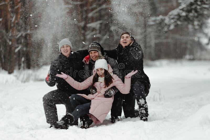 Amici che giocano con la neve in parco immagini stock libere da diritti
