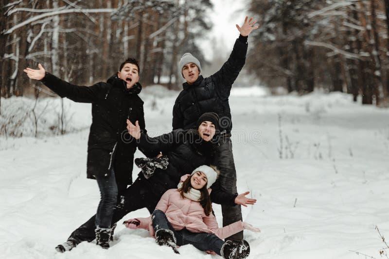 Amici che giocano con la neve in parco fotografia stock