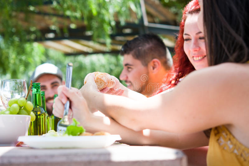 Amici che godono del giorno di picnic immagini stock