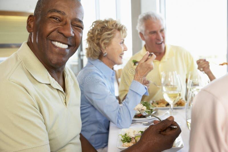 amici che hanno ristorante del pranzo fotografia stock libera da diritti
