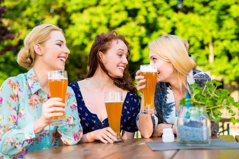 Amici che tostano con la birra nel pub del giardino immagini stock libere da diritti