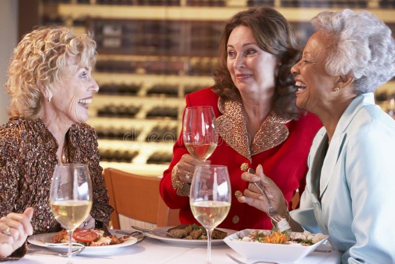 amici del pranzo che hanno ristorante insieme immagine stock