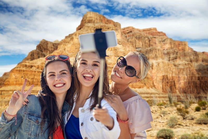 Amici femminili che prendono selfie sopra il Grand Canyon fotografie stock libere da diritti