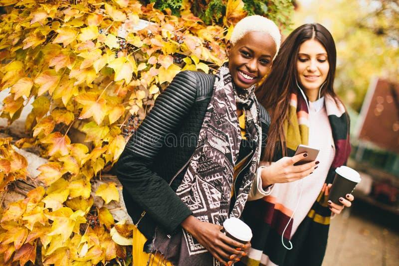 Amici multirazziali che camminano intorno al parco di autunno fotografie stock