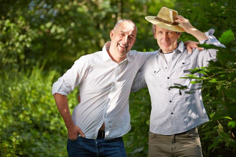 Amicizia maschio con due uomini senior fotografie stock libere da diritti
