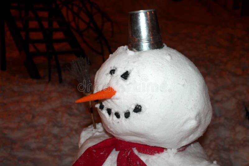 Amico dell'inverno fotografie stock