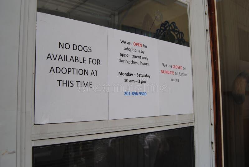 Pet Adoptions, No Dogs Available, Lyndhurst, NJ, USA royalty free stock photo